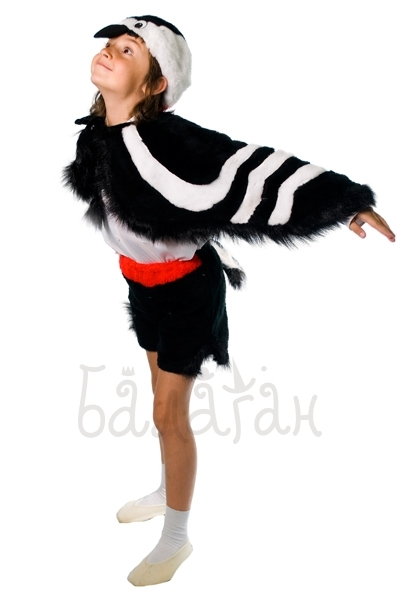 Woodpecker birds collection costume for a little boy