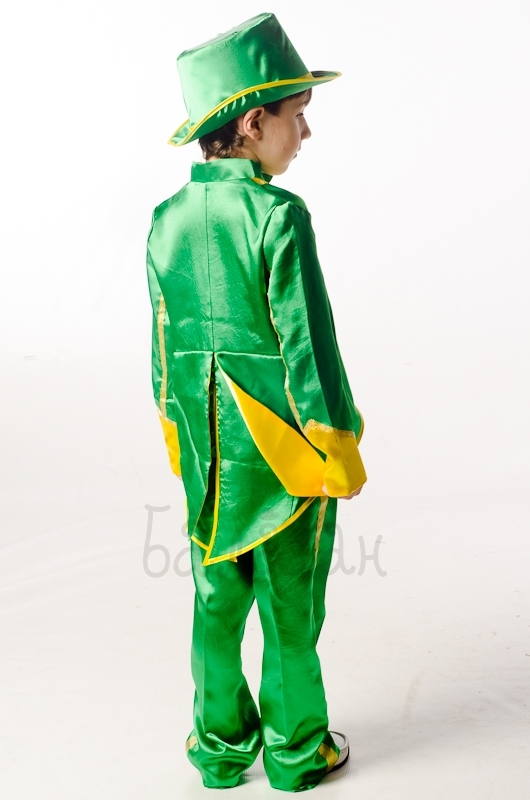 Grasshopper insects costume for a little boy