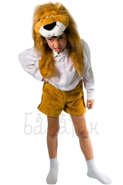 Lion costume for little boy animal collection