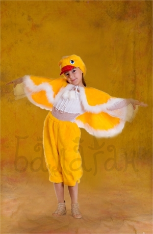 Little duck costume for little boy animal collection