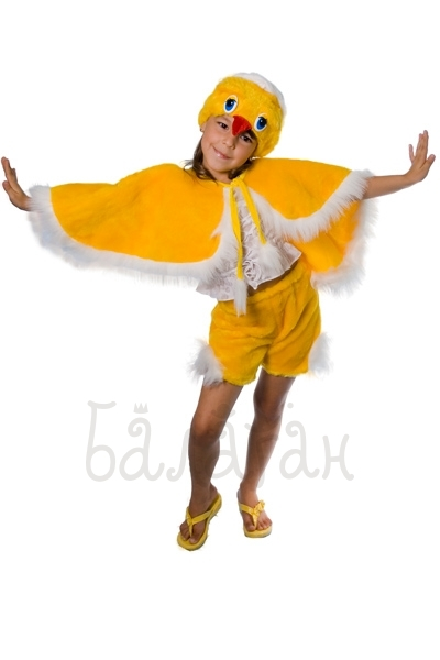 Chick birds collection costume for a little boy