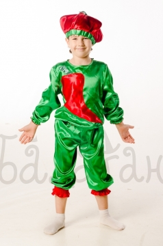 Pepper vegetable collection costume for a little boy