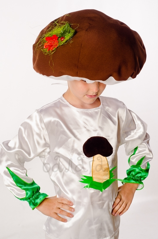 Костюм гриба боровика