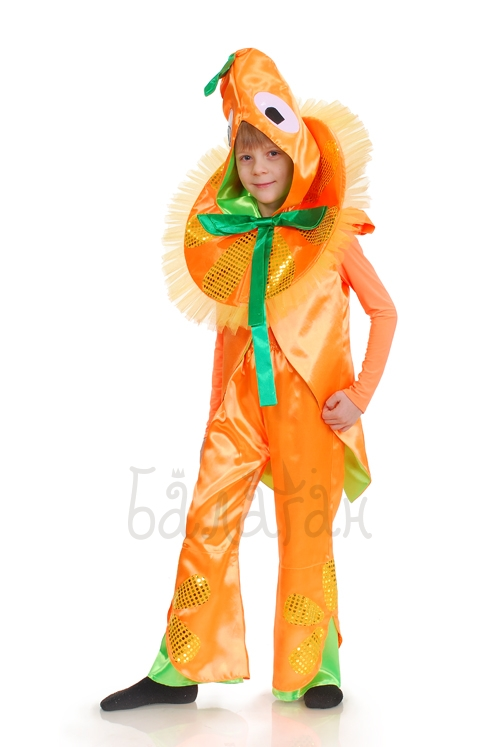 Orange costume for little boy fruit collection