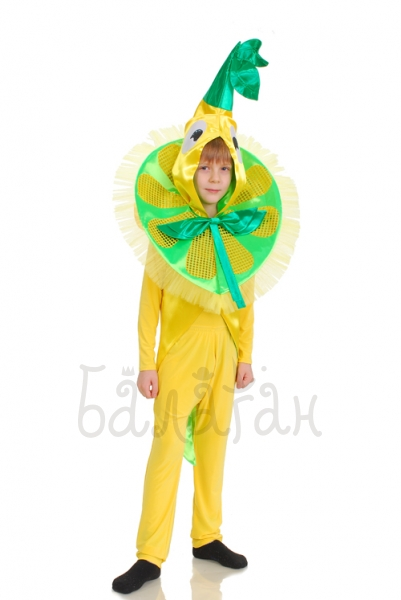 Lemon fruit collection costume for little boy