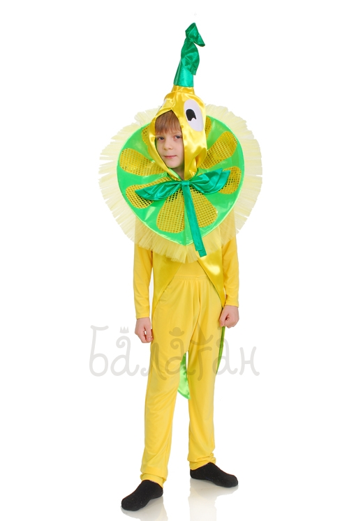 Lemon fruit collection costume for little boy
